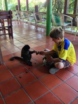 Tourist kid with a monkey