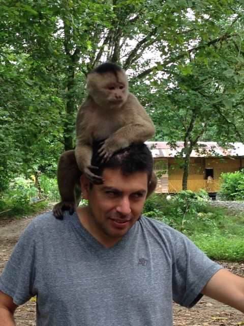 Tourist with a monkey on his head